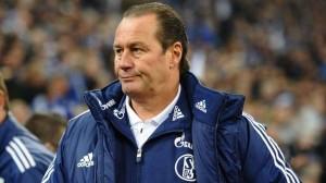 Hoffenheim rămâne fără antrenor