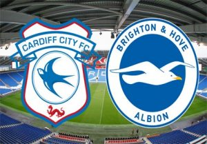 Cardiff v Brighton preview